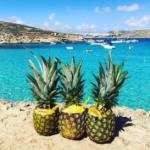 マルタのビーチ&世界遺産&ホテル|さまぁ~リゾート2017