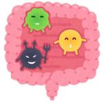 腸内細菌【痩せる菌】増やす方法・食べ物